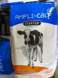 amplicalf cow feed at pro ag farmers