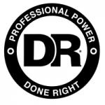 DR Professional Power Logo